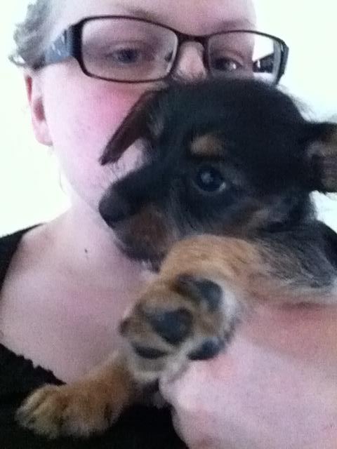 Lily 7 uger gammel.jpg