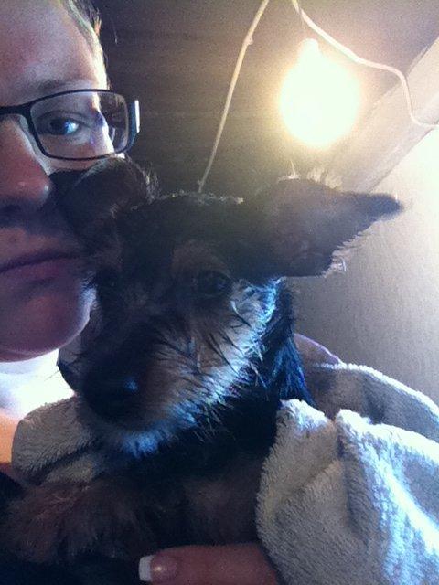 Lily har fået bad.jpeg